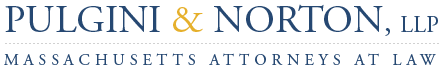 Logo of Pulgini & Norton, LLP