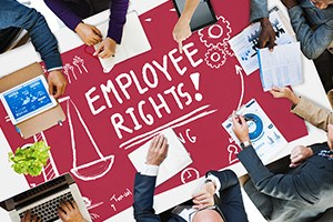 Employee Rights Working Benefits Skill Career Compensation