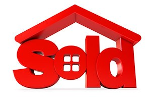 Housing for sale icon